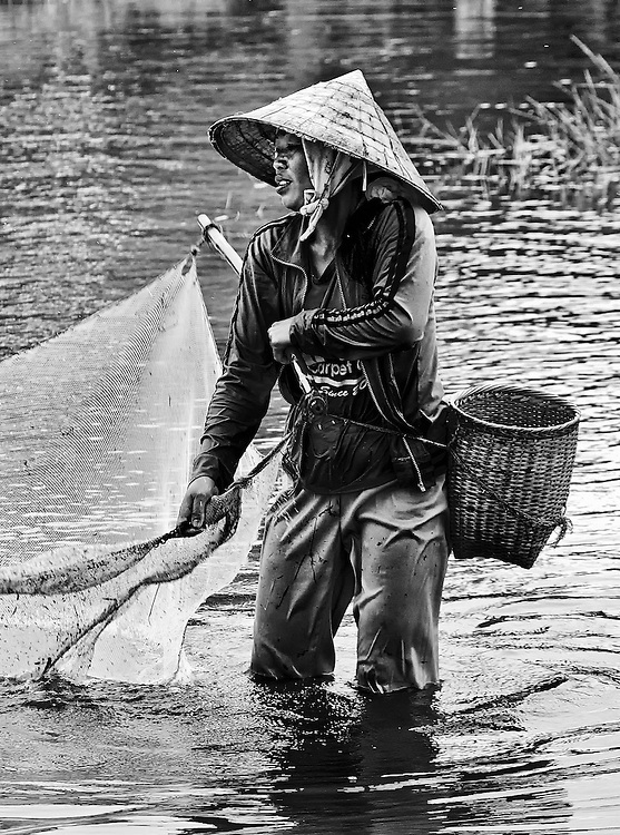 A woman fishing for tadpoles and small fish in the flooded ricefield in Vang Vieng, Laos.