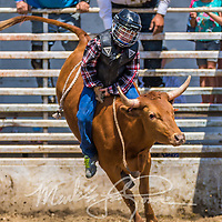Youth Steer Riding