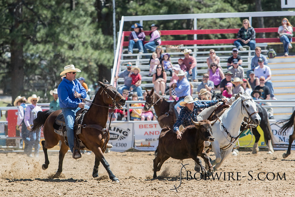 Steer wrestler Gage Greer makes his run in the first performance of the Elizabeth Stampede on Saturday, June 2, 2018.