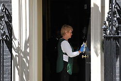 © licensed to London News Pictures. LONDON, UK  24/05/11. A member of the domestic staff polishes the door of No 10. Barak Obama, and Michelle Obama are met by David Cameron and Samantha Cameron in Downing Street during US President Obama's first State Visit to the United Kingdom. Please see special instructions. Photo credit should read Stephen Simpson/LNP