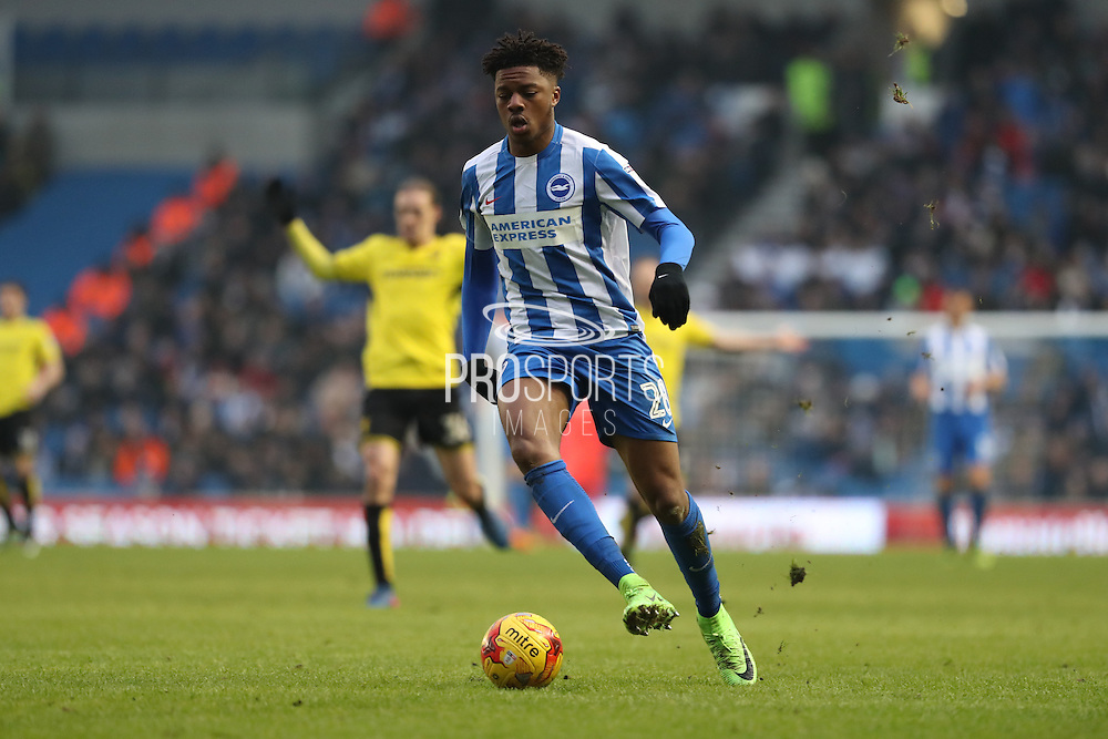 Brighton & Hove Albion striker (on loan from Arsenal) Chuba Akpom (28) on his home debut during the EFL Sky Bet Championship match between Brighton and Hove Albion and Burton Albion at the American Express Community Stadium, Brighton and Hove, England on 11 February 2017.