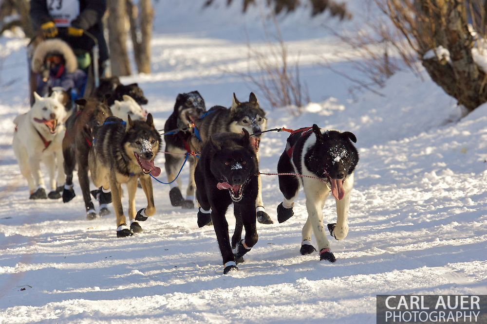 March 7th, 2009:  Anchorage, Alaska - The team of Robert Nelson of Kotzebue, Alaska moves quickly through the woods of the Behm Lake shoreline during the Ceremonial Start of the 2009 Iditarod.