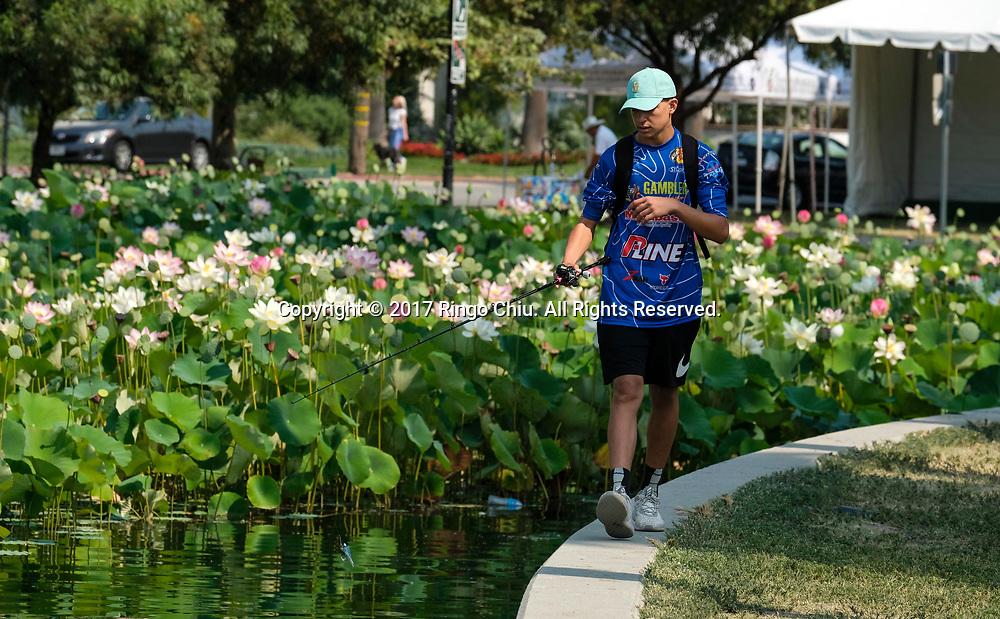 7月12日,在美国洛杉矶市中心附近的回声公园,一名男子在荷花池旁钓鱼。一年一度的莲花节将于七月十五至十六日举行,届时不但可观赏盛开的荷花,还将有各式亚洲美食、民俗表演和手工艺品展出。新华社发 (赵汉荣摄)<br /> A man fishes at lotus pond on Wednesday, July 12, 2017 at Echo Park near downtown Los Angeles, the United States. The annual Lotus Festival will hold on July 15-16. The Festival was originally named &quot;The Day of the Lotus&quot;, and the purpose was to promote an awareness and understanding of the contributions by the Asian and Pacific Islander people to American culture and the local and surrounding communities. (Xinhua/Zhao Hanrong)(Photo by Ringo Chiu)<br /> <br /> Usage Notes: This content is intended for editorial use only. For other uses, additional clearances may be required.