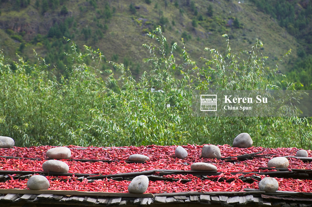 Drying red pepper on the roof, Paro, Bhutan