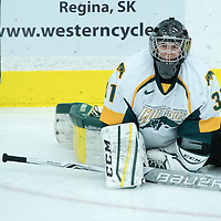 2nd year goalie Jane Kish (31) of the Regina Cougars stretches ahead of the Women's Hockey home game on October 8 at Co-operators arena. Credit: Arthur Ward/Arthur Images