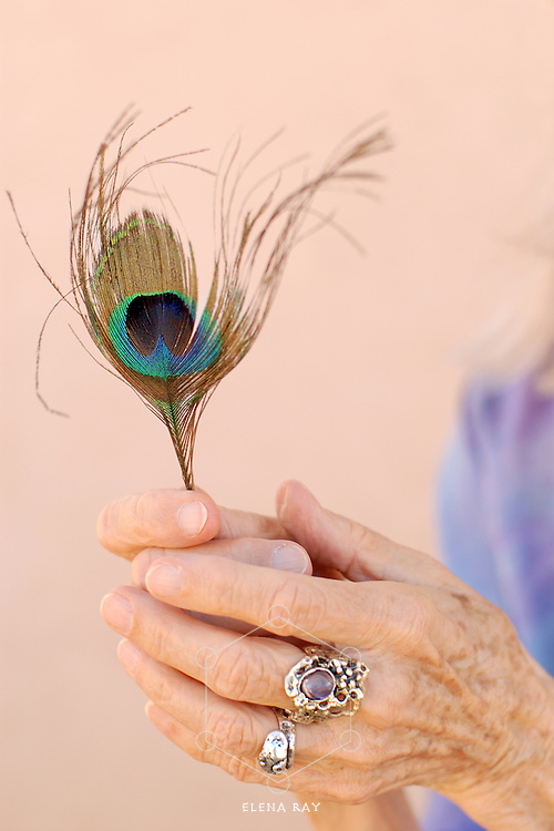 The adorned hand of a woman in her 80's holding a peacock feather.