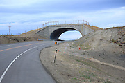 Wildlife Bridge overpass on CO Hwy 9, south of Kremmling, Colorado.