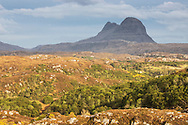 Regenerating ribbons of woodland across Assynt with Suilven in distance, Lochinver, Scotland.