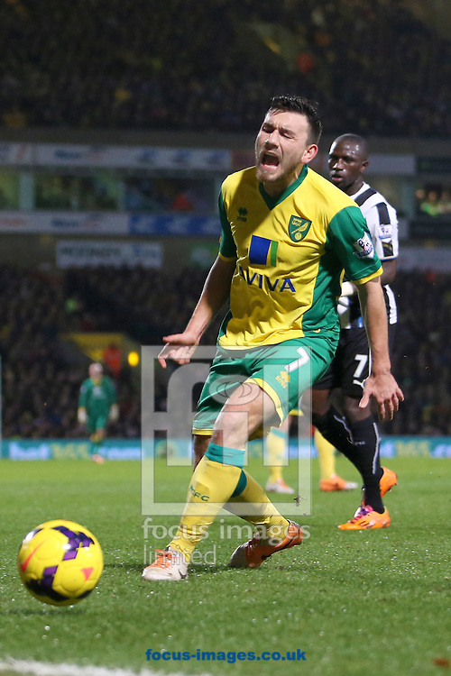 Picture by Richard Calver/Focus Images Ltd +447792 981244<br /> 28/01/2014<br /> Robert Snodgrass of Norwich City came under abuse from his own fans during the Barclays Premier League match against Newcastle United at Carrow Road, Norwich.