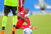 Mariano of Sevilla is injured during the Pre-Season Friendly match between Brighton and Hove Albion and Sevilla at the American Express Community Stadium, Brighton and Hove, England on 2 August 2015. Photo by Phil Duncan.