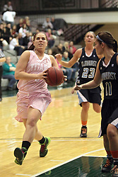 08 February 2014:  Colleen McMahon leads Hannah Lipman and passing Katie Swanson during an NCAA women's division 3 CCIW basketball game between the Elmhurst Bluejays and the Illinois Wesleyan Titans in Shirk Center, Bloomington IL
