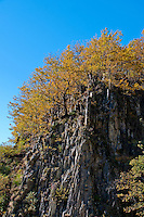 Golden autumn trees and granite rock face in the Valle Onsernone in Ticino, Southern Switzerland.