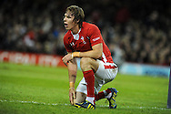Liam Williams of Wales is left on his knees as New Zealand score a try. Dove Men autumn international series, Wales v New Zealand at the Millennium stadium in Cardiff , South Wales on Saturday 24th November 2012. pic by Andrew Orchard, Andrew Orchard sports photography,