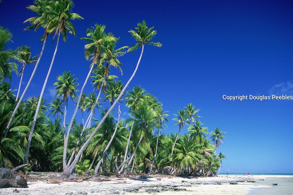 Nataiva, Tuamotu Islands, French Polynesia<br />