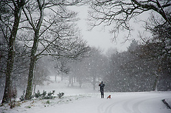 LIVERPOOL, ENGLAND - Friday, January 18, 2013: A dog walker braves the first snow fall of the winter in South Liverpool's Victorian Park. (Pic by David Rawcliffe/Propaganda)