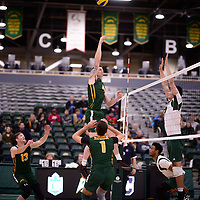 3rd year middle blocker Cody Caldwell (4) of the Regina Cougars in action during Men's Volleyball home game on November 3 at Centre for Kinesiology, Health and Sport. Credit: Arthur Ward/Arthur Images