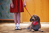 """Gus, playing the canine companion to the lead character in the Christian Youth Theater production of """"Annie"""", relaxes as Kiara Klinkefus, 12, discusses her experiences in the play Wednesday with children at the Coeur d'Alene Public Library. The play opens Friday at the Kroc Center and will run through March 4."""