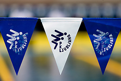 PK Ljubljana's flags during the 35th International Swimming meeting Ljubljana 2010, on May 23, 2010 at Kodeljevo pool, Ljubljana, Slovenia. (Photo by Vid Ponikvar / Sportida)
