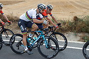 Peter Sagan (SVK - Bora - Hansgrohe) and Vincenzo Nibali (ITA - Bahrain - Merida) during the 73th Edition Tour of Spain, Vuelta Espana 2018, stage 10 cycling race, Salamanca - Fermoselle Bermillo de Sayago 177 km on September 4, 2018 in Spain - Photo Luis Angel Gomez / BettiniPhoto / ProSportsImages / DPPI