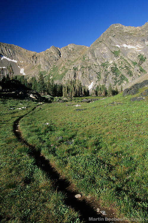 Hiking trail through alpine meadow, summer, Missouri Lakes Basin, Holy Cross Wilderness, White River National Forest, Colorado