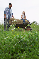 Father pushing daughter (5-6) in wheelbarrow in field