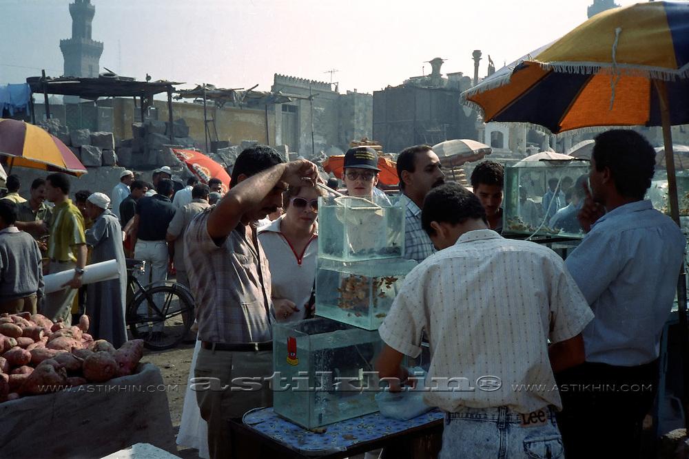Exotic birds and fish flea market in Cairo.