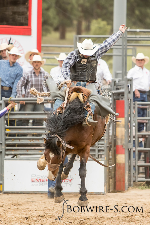 Saddle brond rider Lane Stirling takes his reride during the third performance of the Elizabeth Stampede on Sunday, June 3, 2018.
