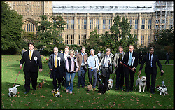 MP's Take part in the Westminster Dog of the Year 2013 with his dog Noodle. London, United Kingdom. Thursday, 10th October 2013. Picture by Andrew Parsons / i-Images