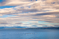 CANAL BEAGLE Y NUBES, USHUAIA, PROVINCIA DE TIERRA DEL FUEGO, ARGENTINA (PHOTO BY © MARCO GUOLI - ALL RIGHTS RESERVED. CONTACT THE AUTHOR FOR ANY KIND OF IMAGE REPRODUCTION)