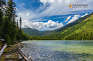Moose Lake in the Flathead National Forest, Montana, USA
