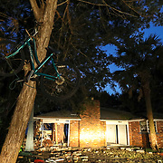 A brick home is gutted while a bicycle that was tied to a tree stayed intact Thursday, Oct. 11, 2018 in Shell Point Beach. Hurricane Michael destroyed some structures and left residents of Shell Point Beach without power after barreling through the area yesterday.