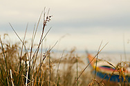 Traditional small fishing boat on the shore of the wetlands near Alcochete by the Tagus river