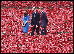 Image licensed to i-Images Picture Agency. 05/08/2014. London, United Kingdom. The Duke and Duchess of Cambridge and Prince Harry at the Tower of London's 'Blood Swept Lands and Seas of Red' poppy installation .  Picture by Stephen Lock / i-Images