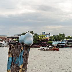 Chao Phra Ya River,(Menam River), Bangkok