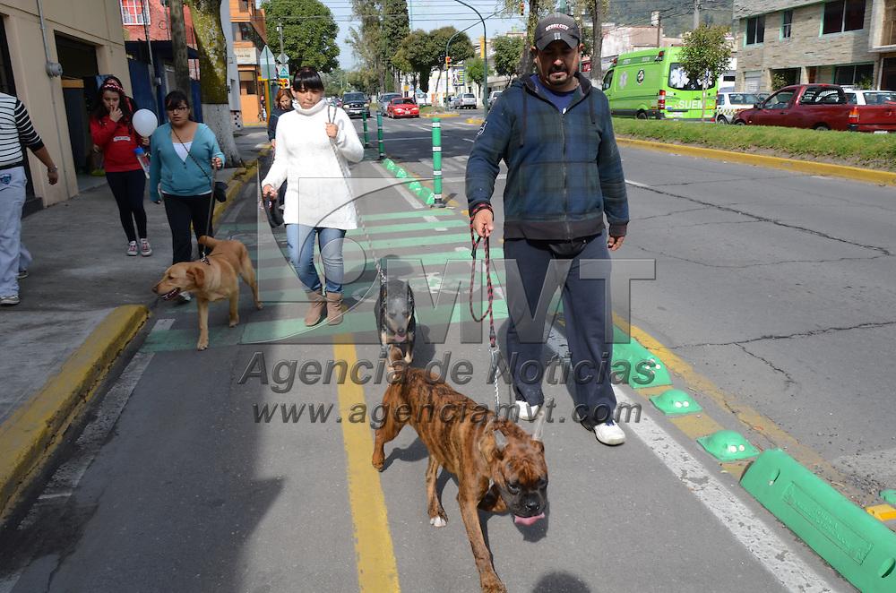 Toluca, México.- Más de 100 perros de diversas razas acompañados de sus dueños acudieron a la primer Caminata Canina con Civismo y Responsabilidad, donde recorrieron la ciclovia ubicada en la Avenida Hidalgo al parque Vicente Guerrero. Agencia MVT / Arturo Hernández.