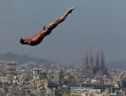FINA World Championships -- Barcelona, Spain