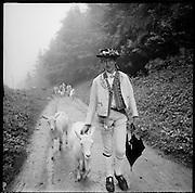 Traditioneller Alpaufzug im Appenzell. Der Bergbauer Meinrad Koch und seine Herde ziehen auf die Alp. Monté à l'alpage traditionelle en Appenzell. © Romano P. Riedo
