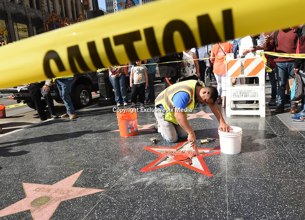 The Donald Trump star was vandilazed during the night and being repaired held @ the Hollywood Blvd. October 26, 2016<br /> ©Exclusivepix Media