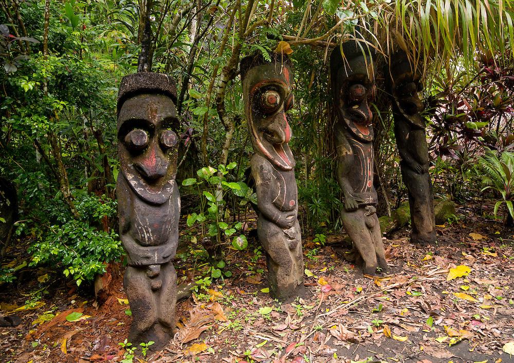 Vanuatu, Malampa Province, Ambrym Island, grade statues in the forest