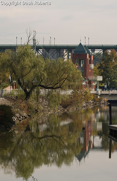 Willow tree on the banks of the Tennessee River in downtown Knoxville, Tn. reflects in the water near Volunteer Landing.