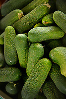 Fresh NC cucumbers for sale at the State Farmers' Market.