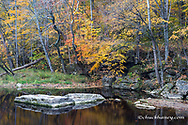 Fall Fork of Clifty Creek in Anderson Falls Nature Preserve in Bartholomew County, Indiana, USA