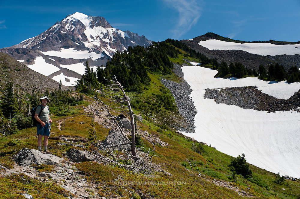 Hiker at 1,830m (6,000 ft) on the McNeil Ridge of Mount Hood 3,424m (11,234ft), with the Glisan Glacier and Ladd Glacier above.  This ridge is accessed from the Top Spur trailhead on the west flank of Mount Hood.
