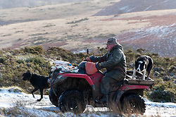 © Licensed to London News Pictures. 28/01/2020. Howey, Powys, Wales, UK A farmer on quad bike with dogs is seen in a wintry landscape near Howey in Powys, Wales, UK. Photo credit: Graham M. Lawrence/LNP