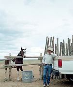 60's Male rancher standing at back of truck looking at horse in pasture.