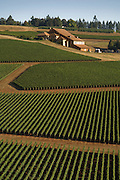 Aerial view of Domaine Drouhin winery, Dundee Hills, Willamette Valley, Oregon