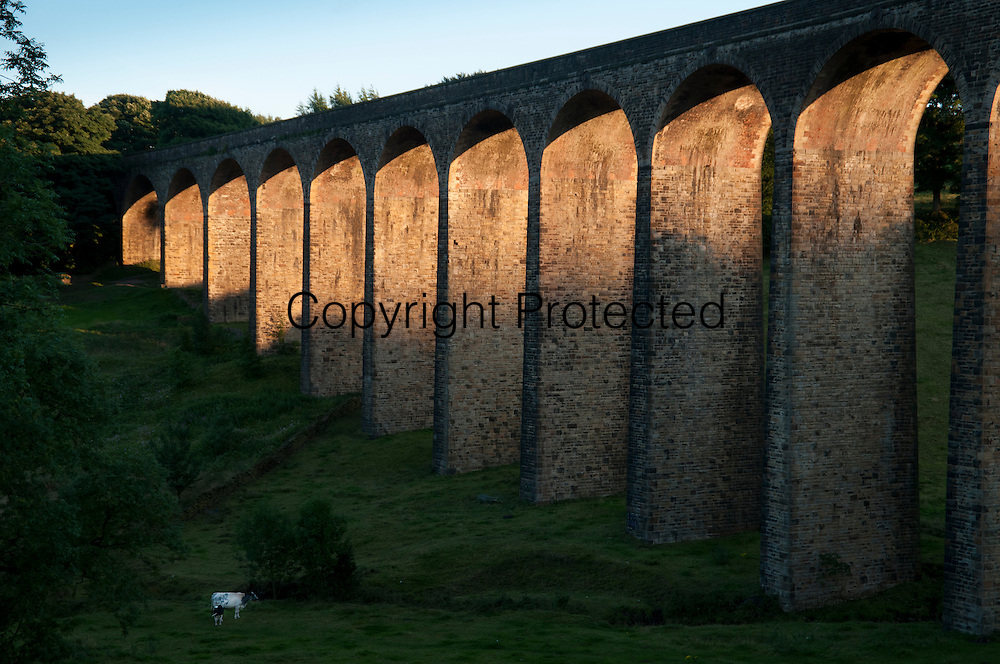 Thornton viaduct near Bradford at Sunset. Opened 1878, disused since the 1960s. Formerly part of the railway line connecting Bradford, Keighley and Halifax, in 2006 it was reopened to walkers.