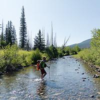 hiker crossing south fork two medicine river, badger two medicine area, montana