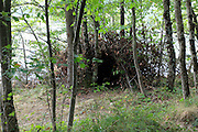 hut made from twigs in the woods