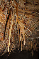 Ceiling crevice in Coldwater Cave, Iowa.